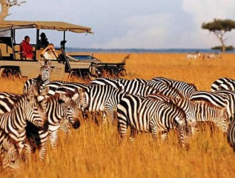 Safari Across Kenya,enjoying the Classic Camps